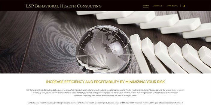 LSP Behavioral Health Consulting